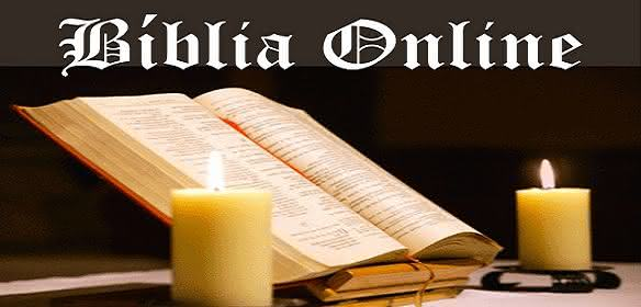 Dicas de Bíblias on-line e uma super Bíblia em PDF para ...